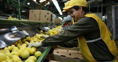 San Miguel y Santander emitieron la primera ON sustentable del país y consiguieron US$ 50 millones
