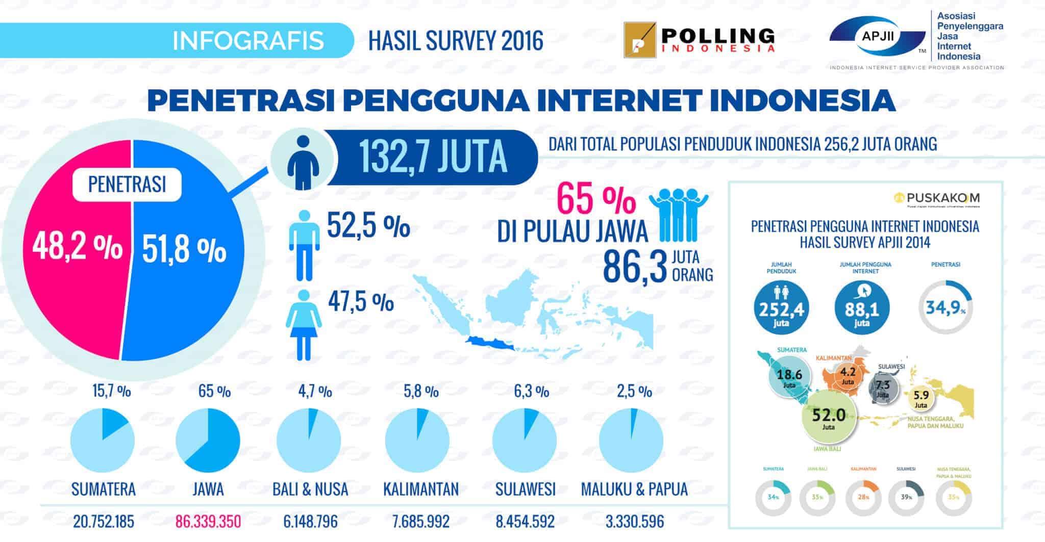 Pengguna-Internet-Indonesia Prospek Bisnis Online di Bumi Pertiwi