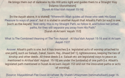Faa'idah From Shaikh Uthaymeen [rahimahullaah] Regarding The One Straight Path With Its Various Branches That Leads a Person to Allaah's Good Pleasure