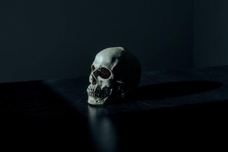 För att kunna leva, förbered dig för döden