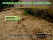 bina lingkungan dan tanaman konservasi desa papringan kecamatan banyumas (20)