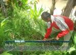 Bina Lingkungan dan Menanam Tanaman Konservasi Sempadan Sungai Serayu desa Pegalongan Patikraja Kabupaten Banyumas (13)