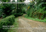 Pembinaan Kelompok Tani Penderes Sekar Mancung Desa Kemawi Kecamatan Somagede Banyumas (7)