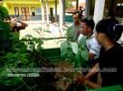 Penghijauan Desa Randegan Kecamatan Kebasen Banyumas Dalam Rangka Keanekaragaman Hayati 2016 (12)