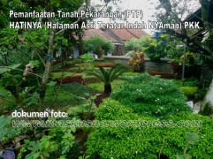 Pemanfaatan Tanah Pekarangan(PTP) Program PKK (18)