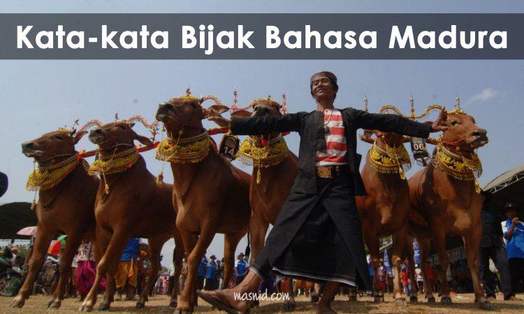 kata kata bijak bahasa madura