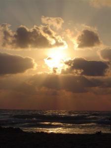 Luz amanecer