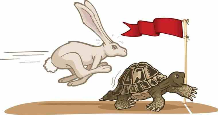 Slow and Steady Wins the Race – A Case for Instinctual Training