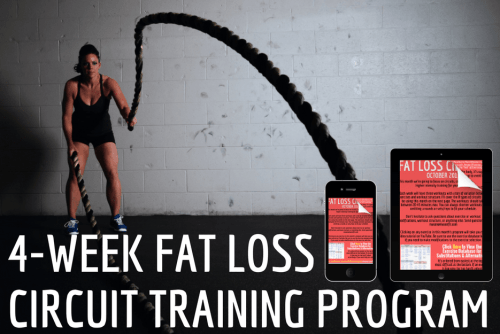 training program for fat loss workout plan for fat loss