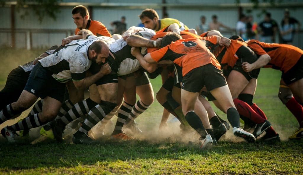 special interest lodge rugby