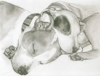 Dixie & Puppy