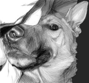 Ren Half Face sketch