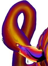 flamingo sketch colour