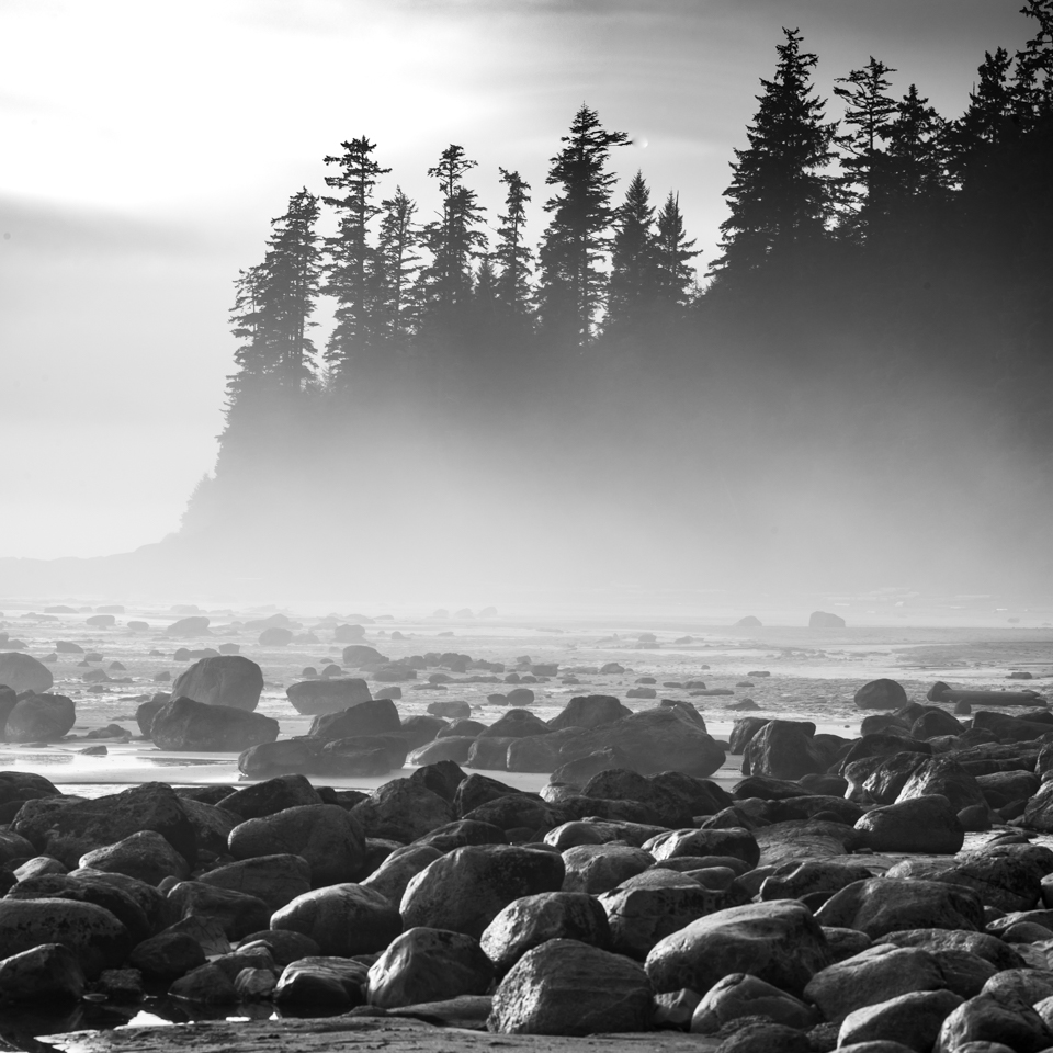 Black and White landscape photograph by commercial photographer Steve Mason on Vancouver Island Canada. Trees and rocks along a misty shoreline