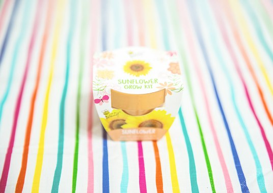 Favorite Things Spring Box Sunflower Grow Kit Front View