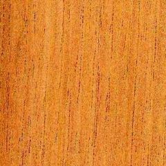 Spanish Cedar Image