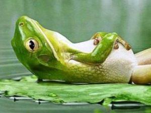 respirer se relaxer sophrologie l'isle sur la sorgue