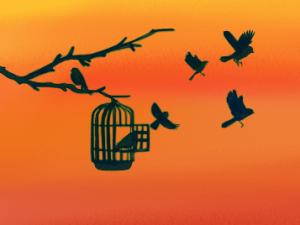 lâcher-prise sophrologie mp3 oiseaux dessin cage ouverte