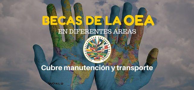 Programa de becas de la OEA – incluye matrícula, alimentación, manutención y pasajes.