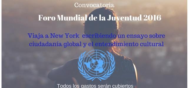 Viaja a New York con todos los gastos pagos escribiendo un ensayo sobre ciudadanía global y el entendimiento cultural