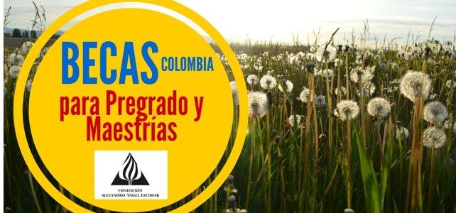 Becas para pregrado y maestrías con Colombia Biodiversa