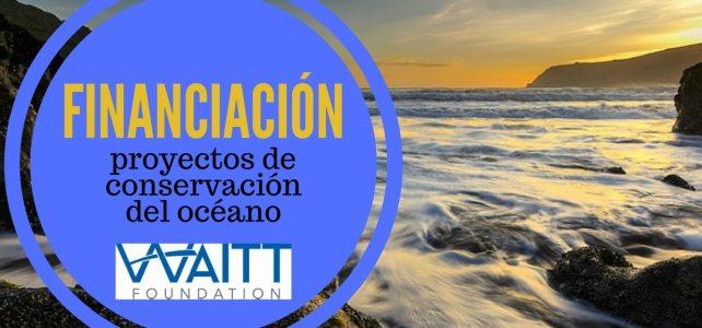 Financiación para proyectos de conservación del océano – ideal para ambientalistas