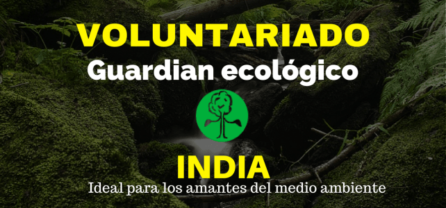 Voluntariado en India para amantes de la naturaleza