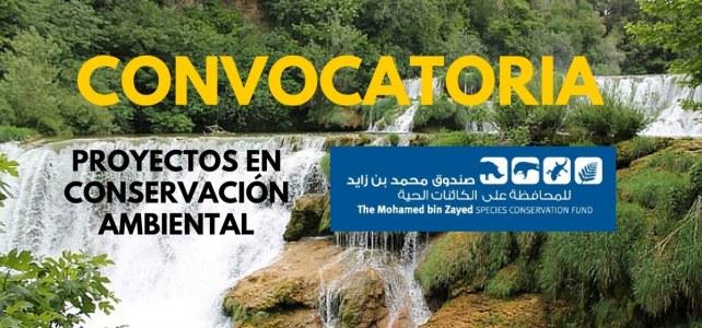 Convocatoria para proyectos de conservación de especies