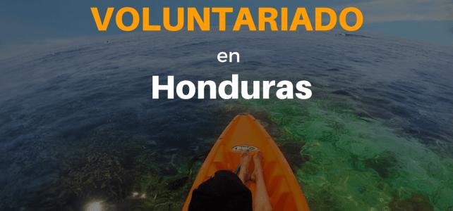 Voluntariado con niñas y niños en Honduras – Honduras Child Alliance