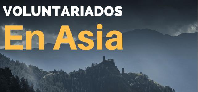 Voluntariados en toda Asia para amantes de la aventura y mochileros
