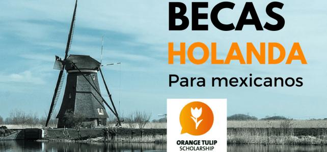 Becas en todos los niveles en Holanda para mexicanos