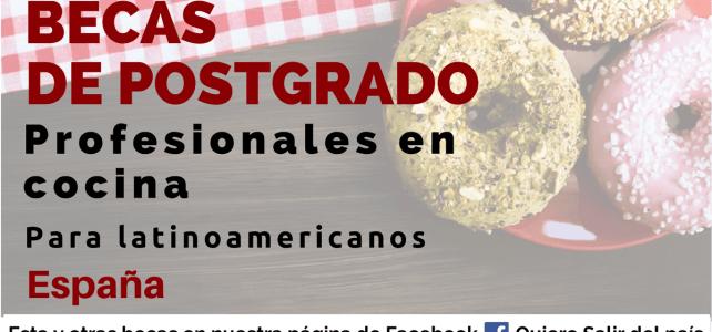 Becas profesionales en cocina en España
