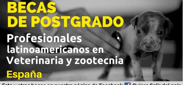 Becas profesionales en veterinaria y zootecnia en España