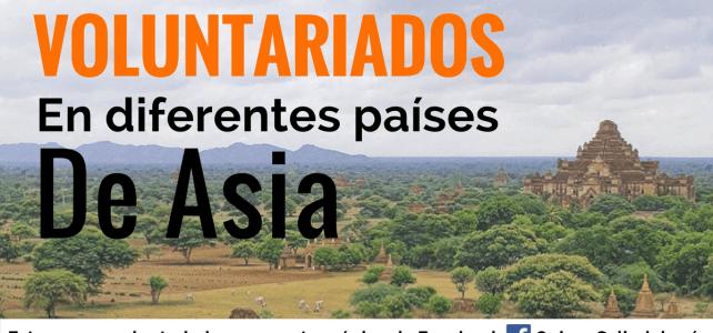Diferentes opciones de voluntariado en Asia – sin restricción de nacionalidad