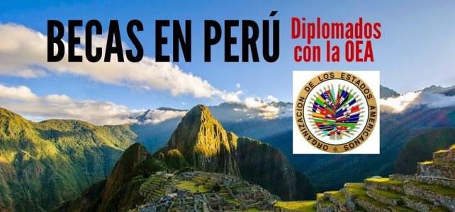 Becas para cursar diplomados con la OEA en Perú