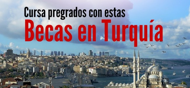 Becas en Turquía para estudios de pregrado