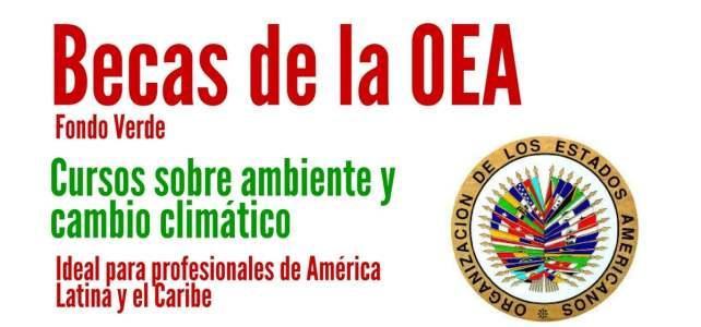 Becas OEA para cursos sobre ambiente y cambio climático