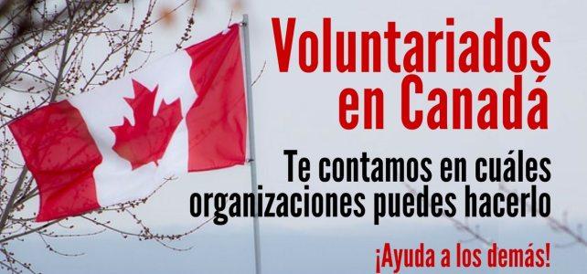 Voluntariado en diversas organizaciones de Canadá