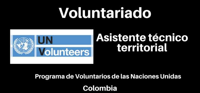 Voluntariado con Naciones Unidas : Asistente Técnico Territorial UN