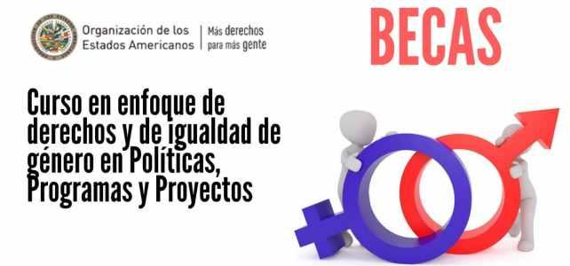 Becas para curso en enfoque de derechos y de igualdad de género en Políticas, Programas y Proyectos