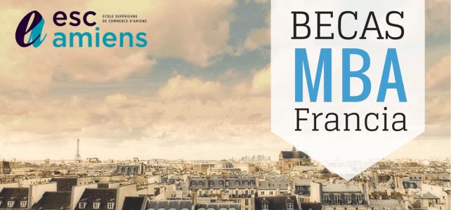 Becas para MBA en Francia