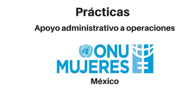 Prácticas y pasantías con ONU mujeres