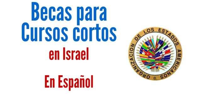 Becas para cursos cortos en Español en Israel