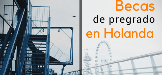 Becas de pregrado en Holanda