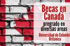Becas en Canadá para pregrado en diversas áreas