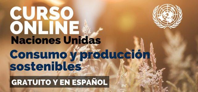 Curso online y en español de las Naciones Unidas sobre consumo y producción sostenibles