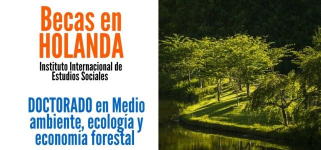 Becas en Holanda para doctorados en áreas de medio ambiente, ecología y economía forestal