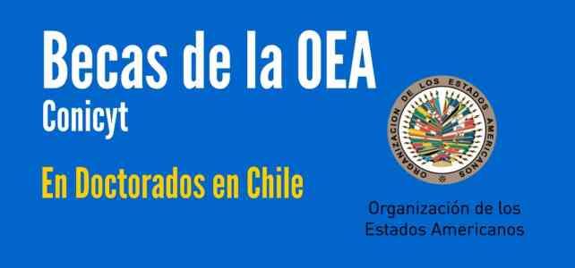 Becas de la OEA y CONICYT para doctorados en Chile