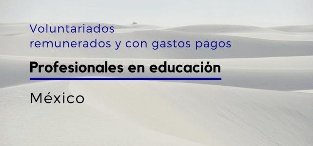 Voluntariado Remunerado en México para educadores