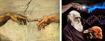 تکامل داروینی و خلقت هوشمندانه